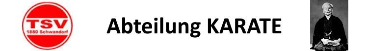 www.schwandorf-karate.de